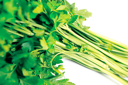 Gaspar Avila - Parsley