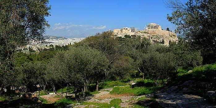 Parthenon The Acropolis Athens Greece Panoramic photo 45 Degrees by Vassilis Triantafyllidis
