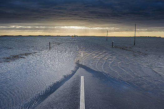 David Taylor - Parting the Tide
