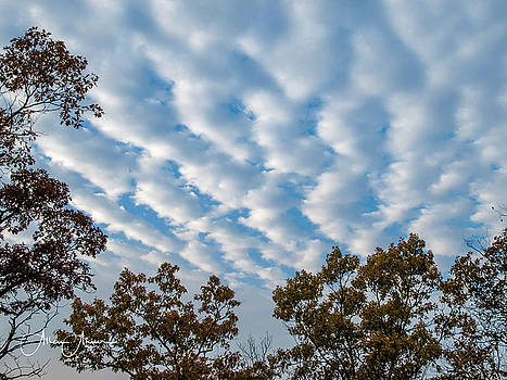 Partly Cloudy is Beautiful by Allen Ahner