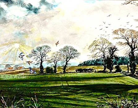 Partridges near Felbrigg Hall by SJV Jeffery-Swailes