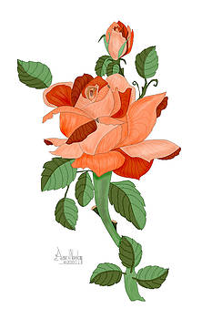Party Colored Rose by Anne Norskog