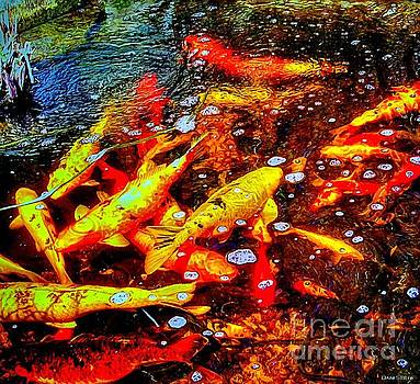 Party In The Koi Pond by Dani Stites