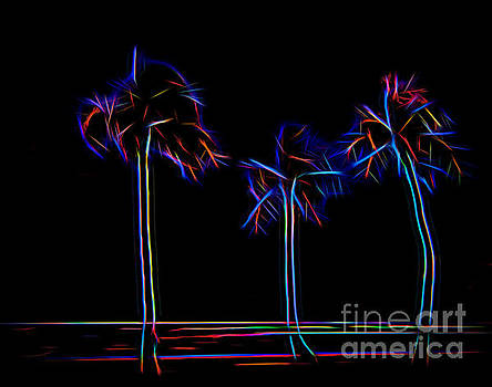 Jon Burch Photography - Party Trees