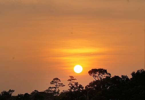 Pascagoula Sunset by Rosalin Moss