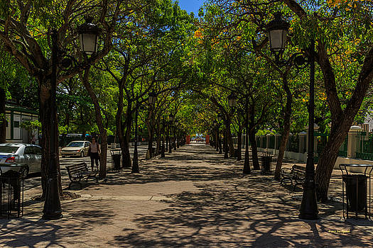 Paseo de La Princesa by Jose Oquendo