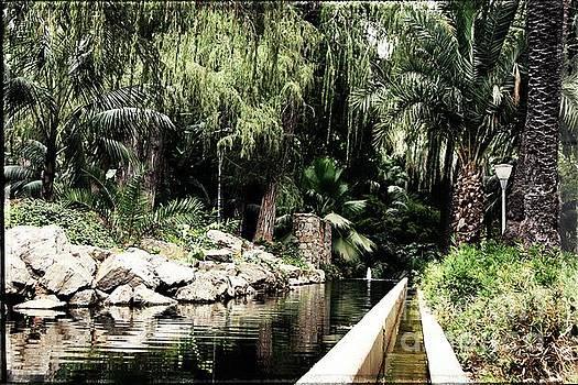 Paseo del Parque, Malaga by Jackie Mestrom