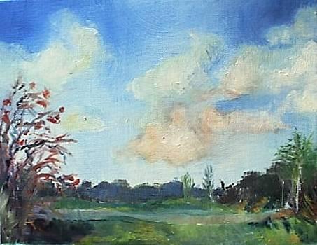 Passing Rain Cloud by Nicole Lane