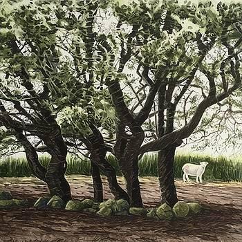 Passing sheep by Alwyn Dempster Jones