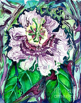 Passion Flower by D Renee Wilson