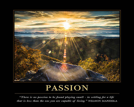Passion Motivational Quote by David Simchock