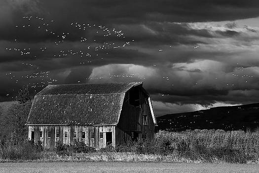 Past to Present in Black and White by David Lunde