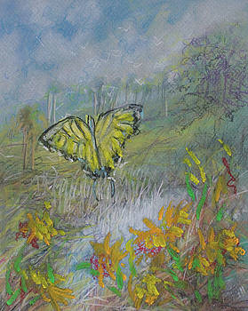 Pastel Butterfly Marsh by Michele Hollister - for Nancy Asbell