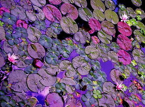 Pastel Lily Pads by Cheryl Brumfield Knox