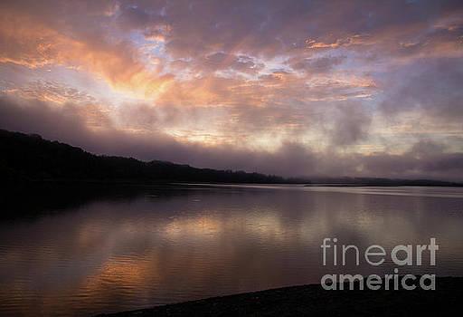 Pastel Morning by Douglas Stucky