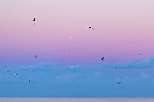 Pastel Sky by Alan Raasch
