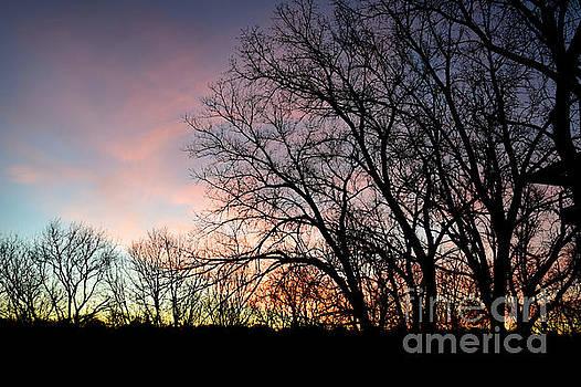Pastel Sunrise by Kathy M Krause