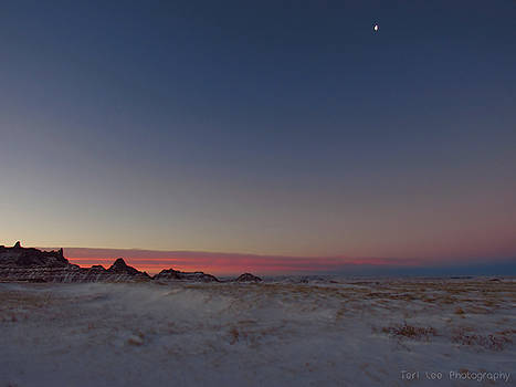 Pastel Winter by Teri Ridlon
