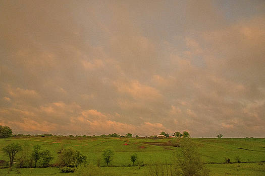 Pastoral landscape by Roy Inman
