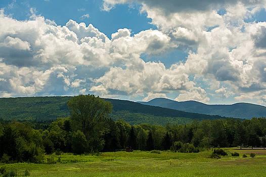 Pastoral Landscape with Mountains by Nancy De Flon