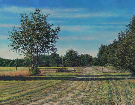 Pastoral off Poplar Hill Road by David P Zippi