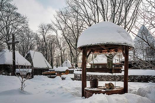 Pastoral winter scene by Daniela Constantinescu