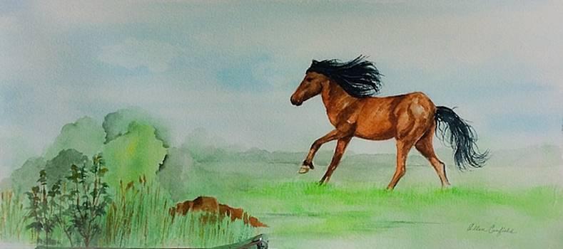 Pasture by Ellen Canfield