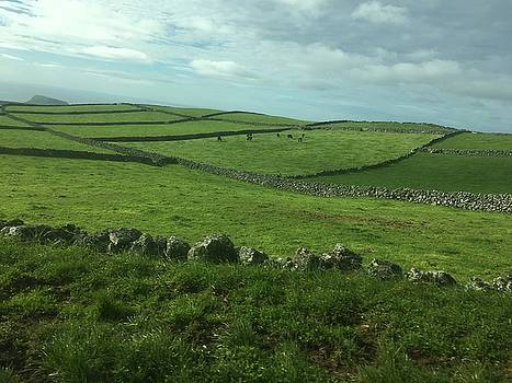 Pastures of Terceira, The Azores, Portugal by Kelly Hazel