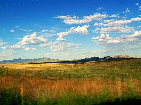 Patagonia Arizona by Kathleen Heese
