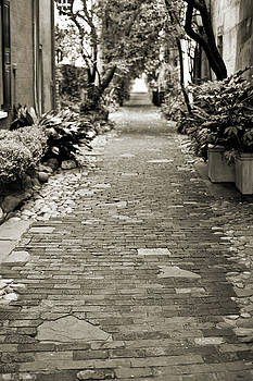 Patchwork Pathway in Sepia AKA Philadelphia Alley by Dustin K Ryan