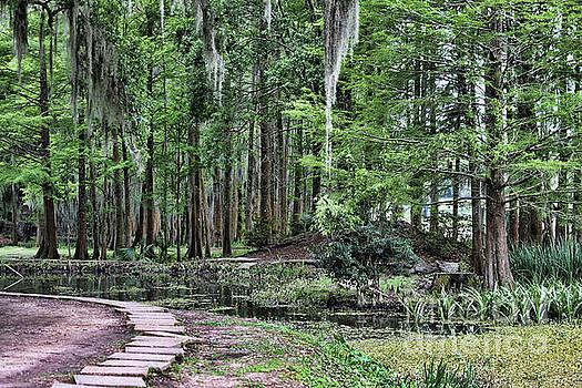 Chuck Kuhn - Path Along Stream Moss