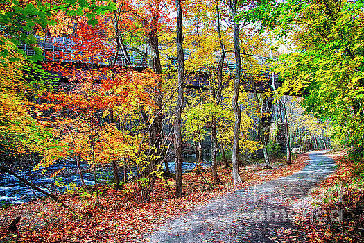 Path Along The River with Fall Foliage by George Oze