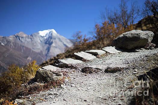 Path and peak in the Himalaya mountains, Annapurna region, Nepal by Raimond Klavins