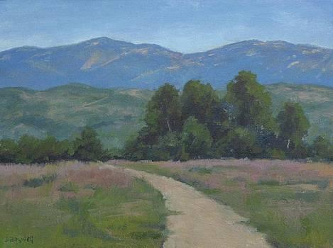 Path at Carpinteria Bluffs Series Five by Jennifer Boswell
