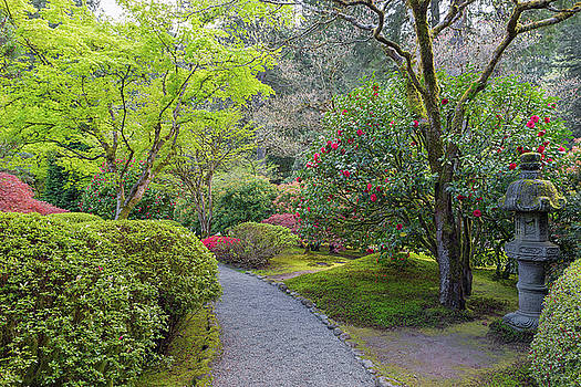 Path at Japanese Garden by David Gn