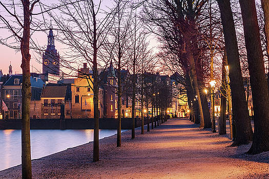 Path by a Pond - the Hague by Barry O Carroll