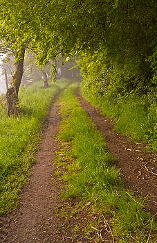 Path from Bullock Lake by Ken Ketchum