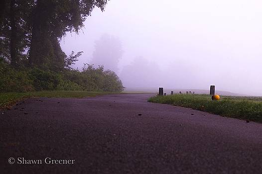 Path in the Mist by Shawn M Greener