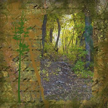 Path Less Taken by Nadine Berg
