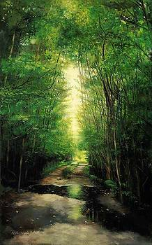 Path of Light by Keith Martin Johns