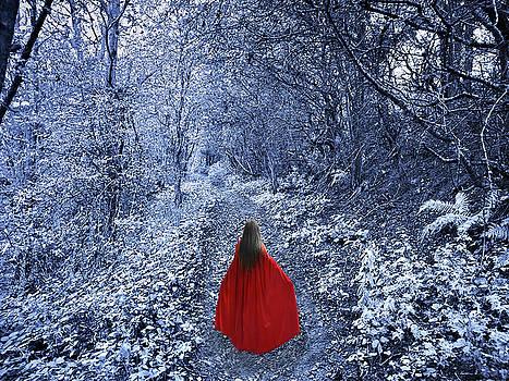 Path of the Faerie by Vicki Lea Eggen