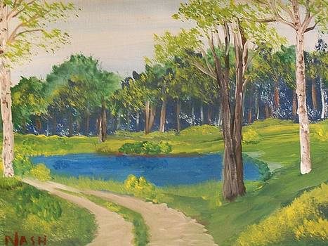 Path past the pond by Teresa Nash