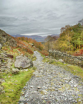 Path Through The Borrowdale Valley by Linsey Williams
