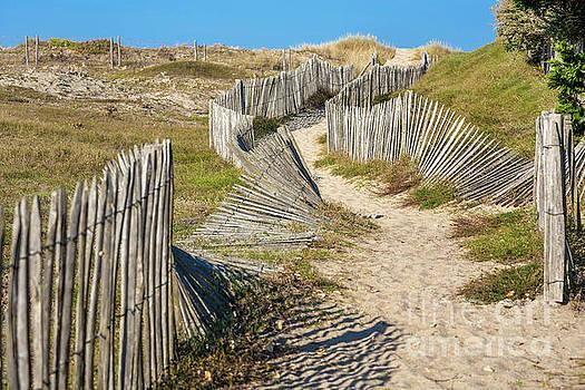 Heiko Koehrer-Wagner - Path through the Dunes