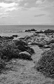 Path to Beach Black and White by Julie Lourenco