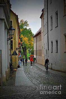Jost Houk - Path to Fall