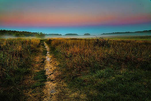 Path to misty mystic future #h7 by Leif Sohlman