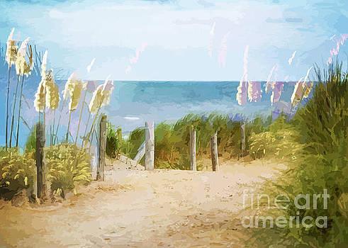 Path To Ocean Beach by Clive Littin