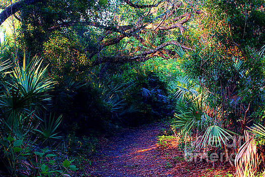 Path to Paradise by Keri West