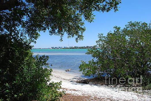Gary Wonning - Path to Sarasota Bay